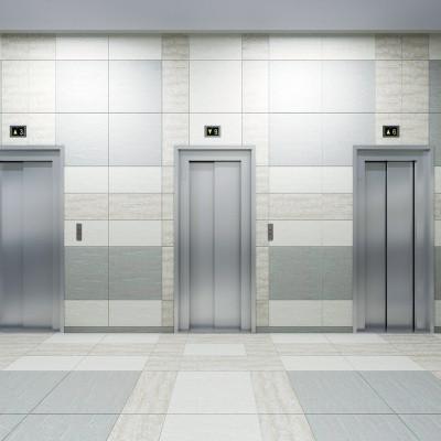 ЖК Приневский вид лифты